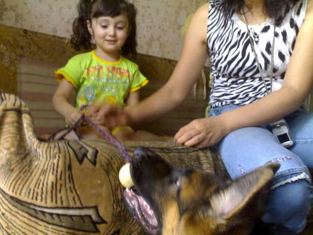 немецкая овчарка Karina в гостях у Devi 070807_12-34_